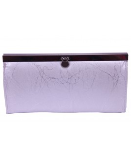 Clip Lock Framed Clutch Purse with  Zip & Inner Credit Card Slots- CLEARANCE BARGAIN !