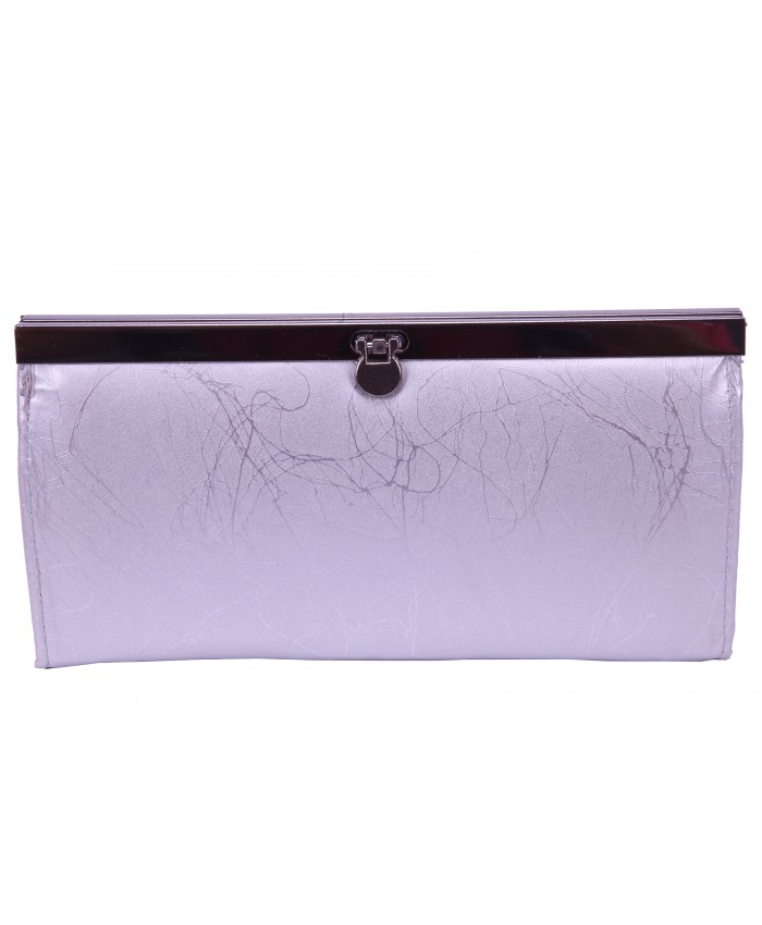 0196d91f360b Clip Lock Framed Clutch Purse with Zip   Inner Credit Card Slots- BARGAIN !