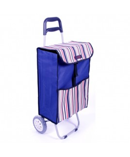Two Wheel Trolley with Flap & Back Zip